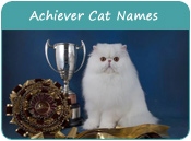 Achiever Cat Names