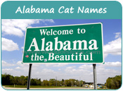Alabama Cat Names