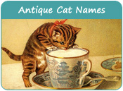 Antique Cat Names
