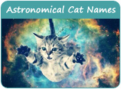 Astronomical Cat Names