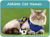 Athlete Cat Names