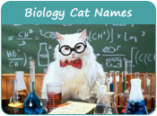 Biology Cat Names