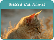 Blessed Cat Names