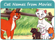 Cat Names From Movies