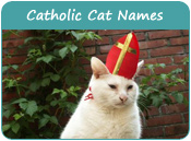 Catholic Cat Names