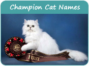 Champion Cat Names