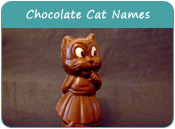Chocolate Cat Names
