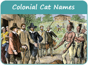 Colonial Cat Names