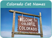 Colorado Cat Names