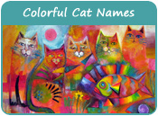 Colorful Cat Names