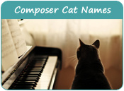 Composer Cat Names