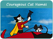 Courageous Cat Names