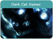 Dark Cat Names