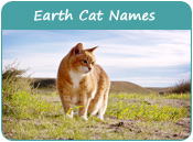 Earth Cat Names