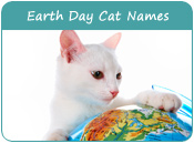 Earth Day Cat Names