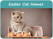 Easter Cat Names