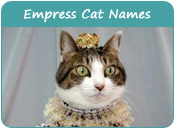 Empress Cat Names