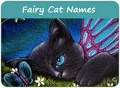 Fairy Cat Names