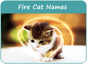 Fire Cat Names