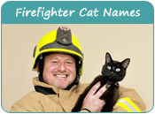 Firefighter Cat Names