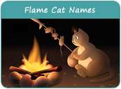 Flame Cat Names