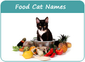 Food Cat Names