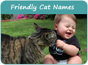 Friendly Cat Names