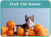 Fruit Cat Names