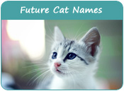 Future Cat Names