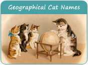 Geographical Cat Names