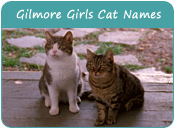 Gilmore Girls Cat Names