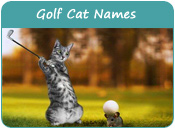 Golf Cat Names