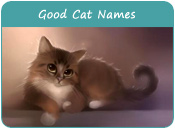 Good Cat Names