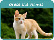 Grace Cat Names