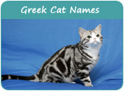 Greek Cat Names