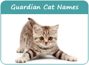 Guardian Cat Names