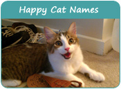 Happy Cat Names