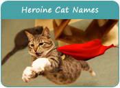 Heroine Cat Names