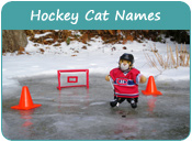 Hockey Cat Names