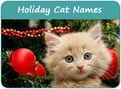 Holiday Cat Names