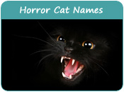 Horror Cat Names