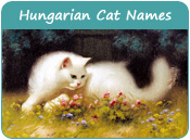 Hungarian Cat Names
