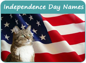Independence Day Cat Names
