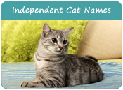 Independent Cat Names
