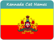 Kannada Cat Names