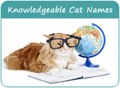 Knowledgeable Cat Names