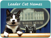 Leader Cat Names