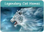 Legendary Cat Names