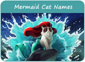 Mermaid Cat Names