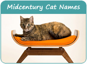 Midcentury Cat Names